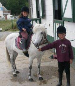 Stages D Equitation A Partir De 3 Ans Reseau Castor